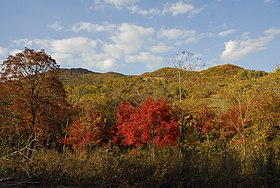 Huadian — Wikipédia