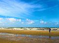 IJmuiden-beach-2013-34 (9045643322).jpg
