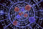Illuminated New Year tree in Korolyov.jpg