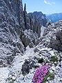 In cima alla ferrata Santner - panoramio.jpg