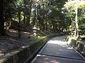 Inari Walkway.jpg