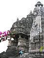 India-5784 - Flickr - archer10 (Dennis).jpg