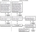 Insurrection Act flowchart 103106 2127.png