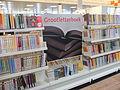 Interieur Bibliotheek Heksenwiel DSCF9369.JPG