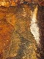 Iron oxide-travertine microgours (Ohio Caverns, western Ohio, USA) 5 (30315972743).jpg