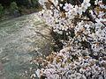 Isaryo, Oguni, Nishiokitama District, Yamagata Prefecture 999-1322, Japan - panoramio.jpg