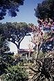 Ischia1987-13 hg.jpg