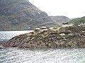 Islet in Loch na Cuilce, Skye - geograph.org.uk - 23842.jpg