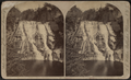Ithaca Fall, Fall Creek, from Robert N. Dennis collection of stereoscopic views.png