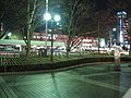 JR Toyama Sta. - panoramio.jpg