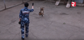 Jackal training - RBTHvideo - 9.png