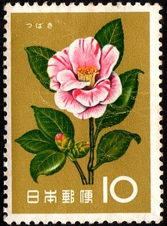 Camellia japonica - C. japonica on a Japanese postage stamp.