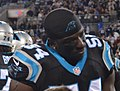 Jason Williams panthers2014.jpg