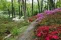 Jenkins Arboretum - DSC00572.JPG