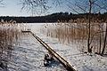 Jezioro Długie - Nidno.jpg