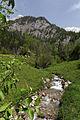 Johnsbach - Nationalpark Gesäuse - Wolfsbauer Wasserfallbach.jpg