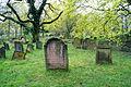 Judensand Worms alter jüdischer Friedhof Ansicht2.jpg