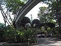 Jurong BirdPark 195.JPG