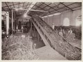 KITLV - 30194 - Kurkdjian, N.V. Photografisch Atelier - Soerabaja - Sugar company in East Java - 1921.tif