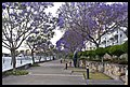 Kangaroo Point water front-2and (3995723729).jpg