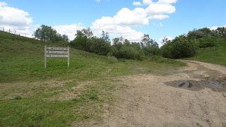 Kempton Park Reservoirs