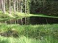 Kesselgrube - panoramio.jpg