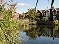 Kew Pond near Kew Green - panoramio.jpg