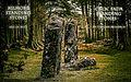 Kilmore Standing Stones.jpg