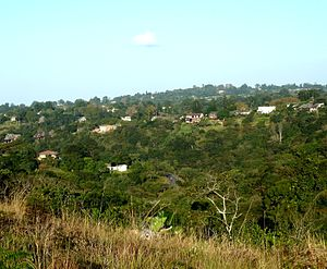 Kloof - Kloof suburbs from Krantzkloof heights