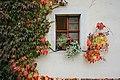 Kloster Altzella 2H1A0536WI.jpg
