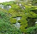Knaresborough - panoramio (3).jpg