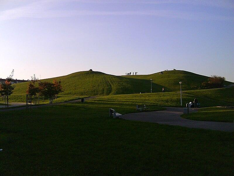 widok z parku
