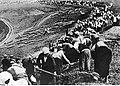 Kopanie okopów przez radziecką ludność cywilną (2-1848).jpg