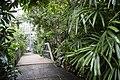 Korkeasaari Zoo's tropical building Africasia.jpg