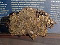 Krasnojarsk meteorite, AMNH.jpg