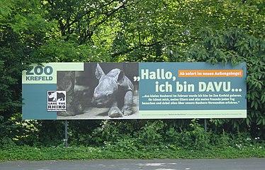 Krefelder Zoo Davu.jpg