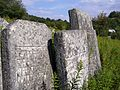 Kremenets Mountains, Jewish cemetery, 27.08.2007 03.jpg