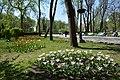 Kyiv Park Shevchenka 01 (YDS 3445).JPG