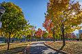 L'automne au Vieux-Port de Montréal (15440229896).jpg
