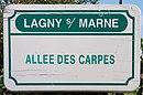 L3028 - Plaque de rue - Allée des carpes.jpg