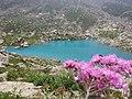 Lago Chiaretto al monviso.jpg
