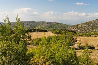Euboea - Landscape near Eretria