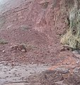 Landslip onto Ness Beach - geograph.org.uk - 1729891.jpg