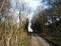 Lane near Lower Whitcliffe - geograph.org.uk - 453009.jpg