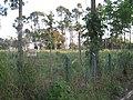 Large field, looking northwest, July 2009 - panoramio.jpg