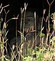 Laung Bwann Brauk-Mrauk U-14-Buddha-gje.jpg