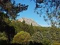 Le Tholonet-FR-13-vue du Mont Venturi-02.jpg