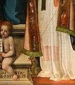 Leonardo Malatesta, Madonna col Bambino tra i santi Pietro, Sebastiano, Cosma, Silvestro e Giovannino, 1518, 11 drago.jpg