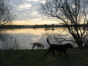 Levenhall Links - Levenhall boating lake