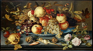 Fruits, Shells and Insects